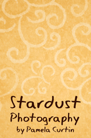 Stardust Photography by Pamela Curtin logo